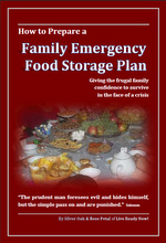 How To Prepare A Family Emergency Food Storage Plan